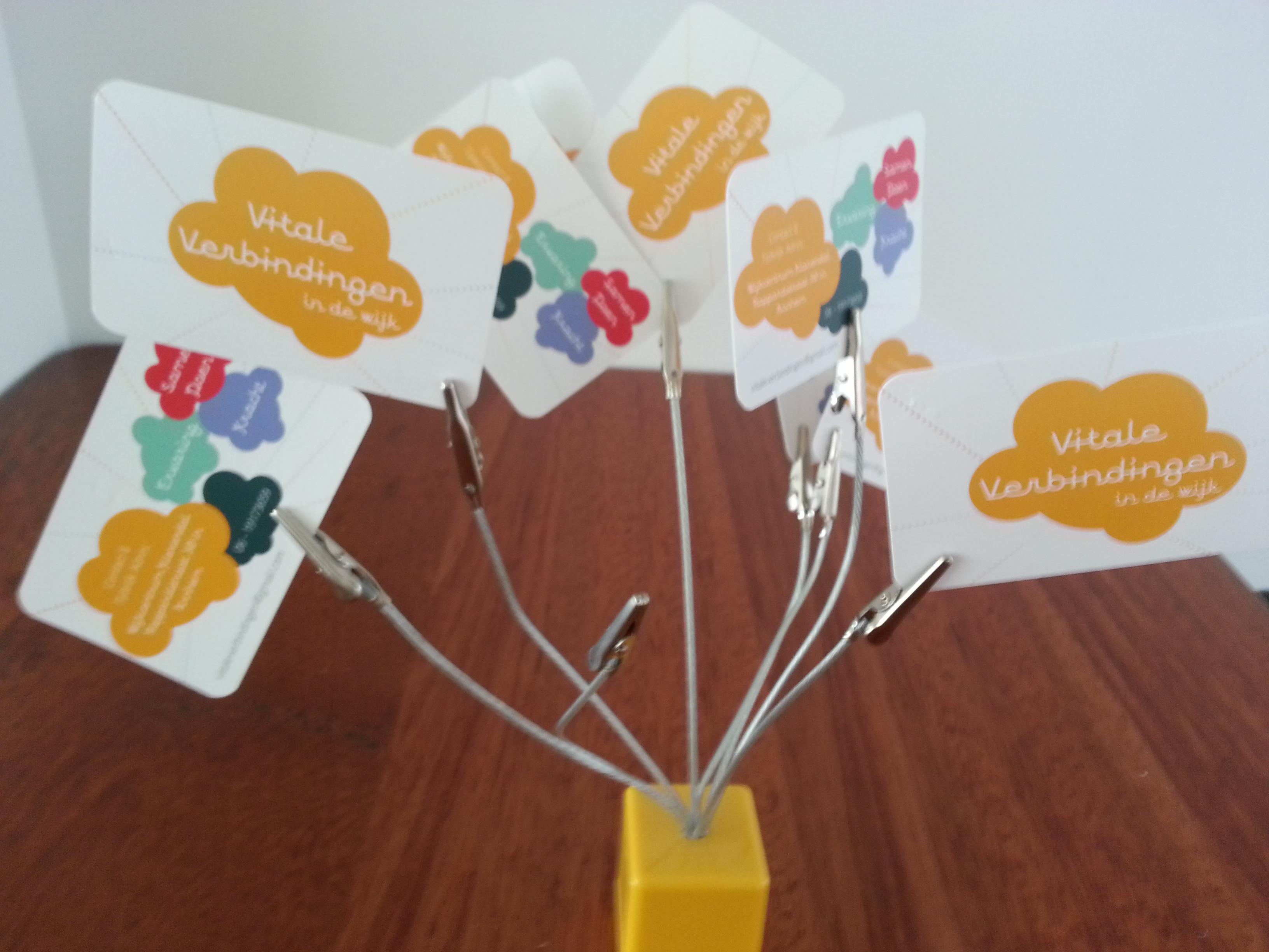 Vitale Verbindingen Presenteert Zomerschool 2015 Voor